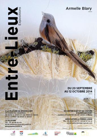 affiche ENTRE LIEUX 23072014